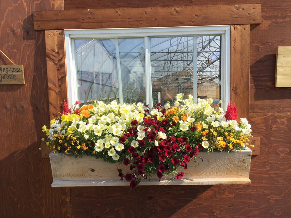 boîte à fleurs