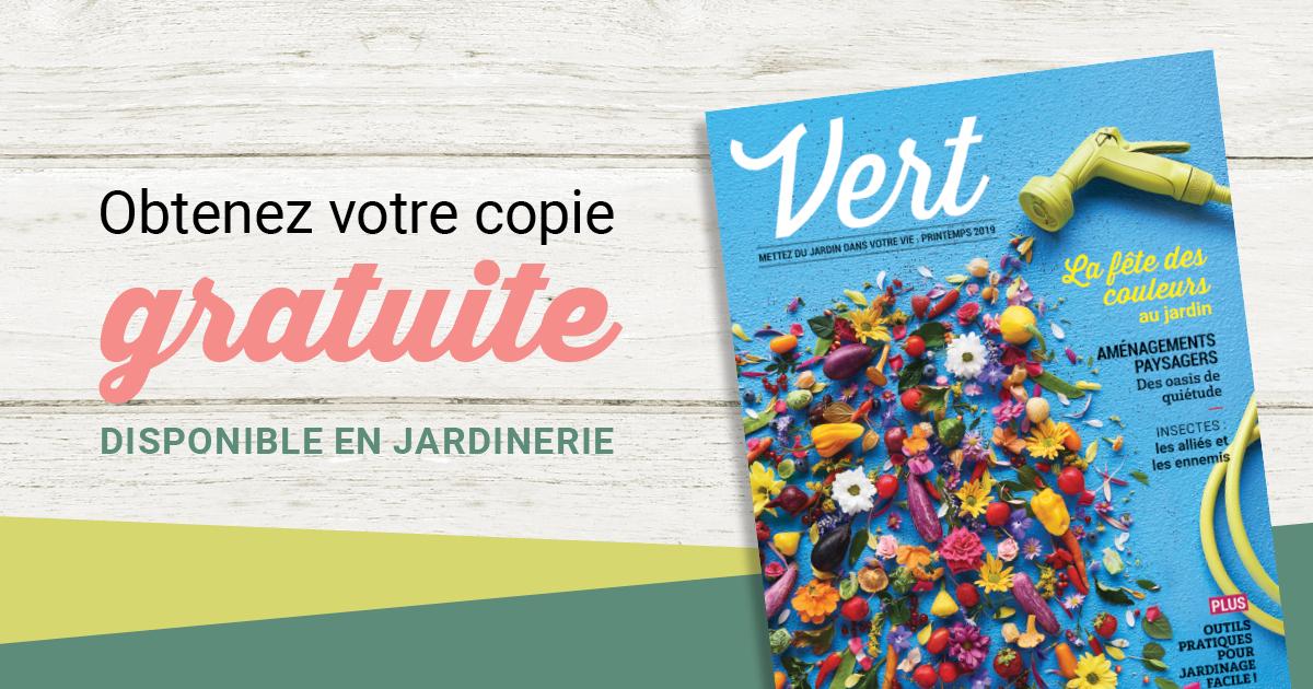 Magazine Vert copie gratuite